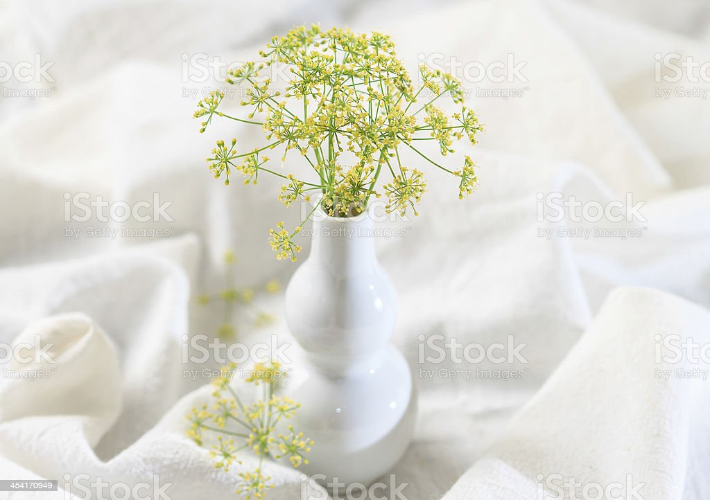Dill flower royalty-free stock photo