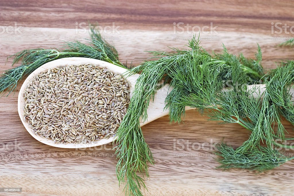 Dill Seed and Weed royalty-free stock photo