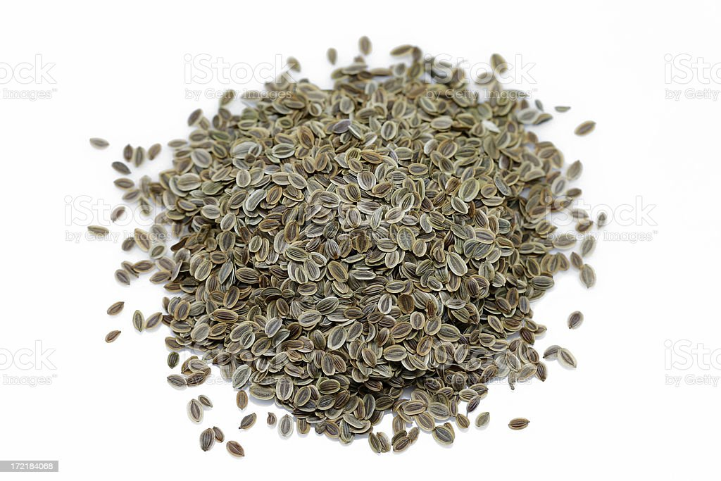 dill seed royalty-free stock photo
