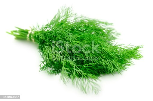 fresh branches of green dillfruits and vegetables collection: