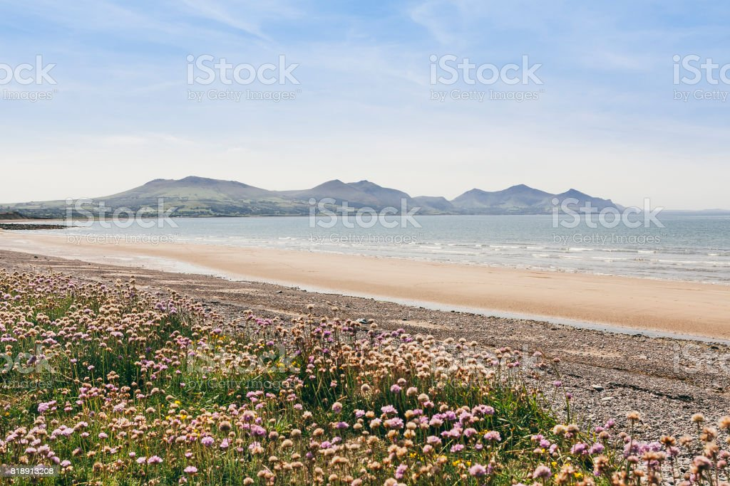 Dinas Dinlle beach in North Wales with view of Snowdonia National Park royalty-free stock photo