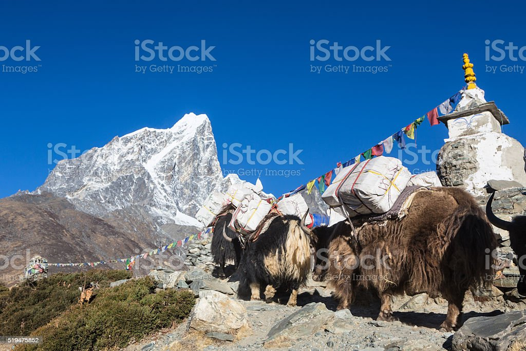 Dingboche stupa in Nepal stock photo