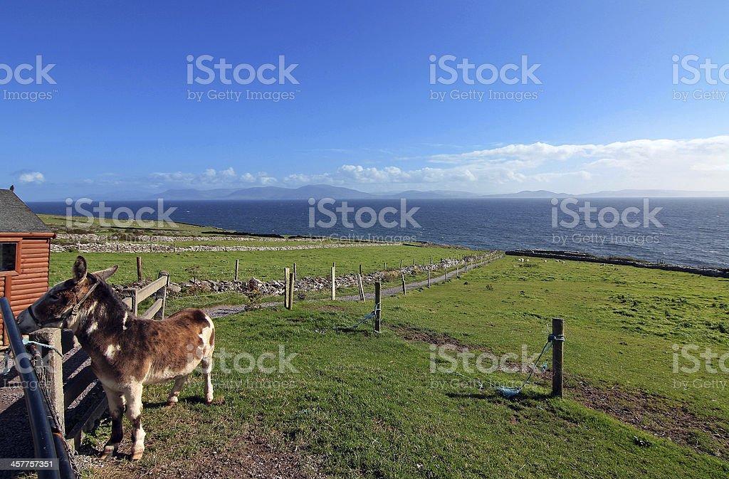 dingle peninsula - view of ireland royalty-free stock photo