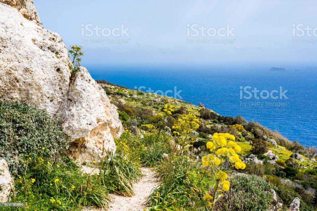 Dingli Cliffs and Mediterranean Sea, Malta stock photo