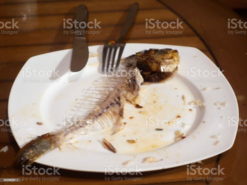 Dinner plate over fish bones stock photo