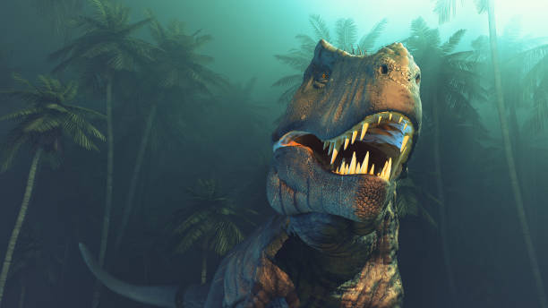 dino-dinosaurier - dinosaurier illustration stock-fotos und bilder
