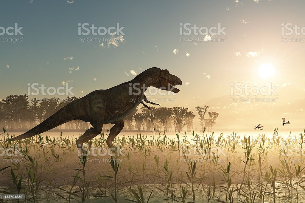 dinosaur at sunrise stock photo