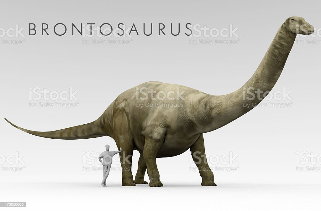 Dinosaur Brontosaurus And Human Size Comparison stock photo