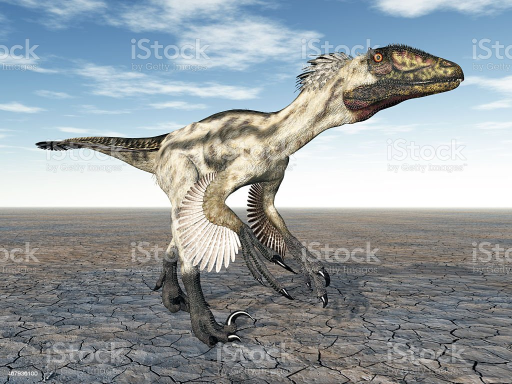 Dinosaur Deinonychus Computer generated 3D illustration with the Dinosaur Deinonychus 2015 Stock Photo