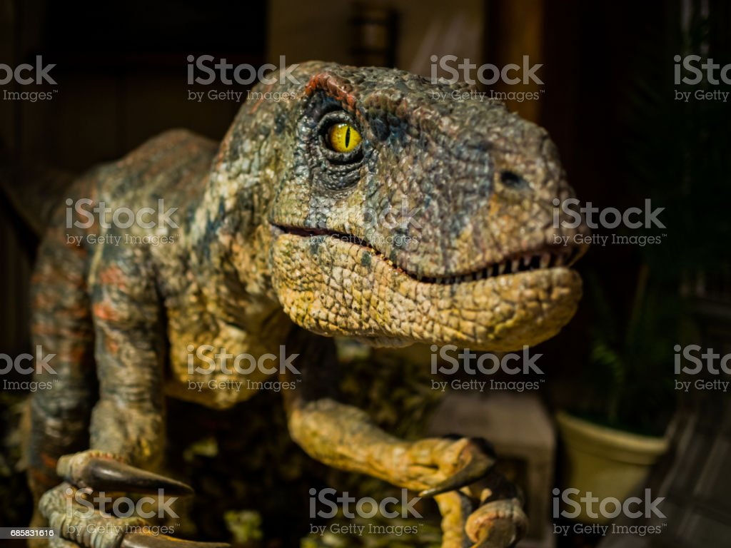 Dinosaur, focus on eye stock photo