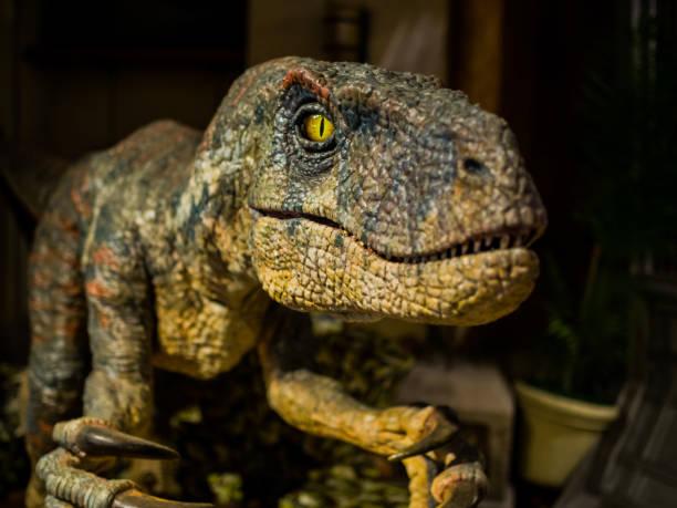 Dinosaur, focus on eye stock photo