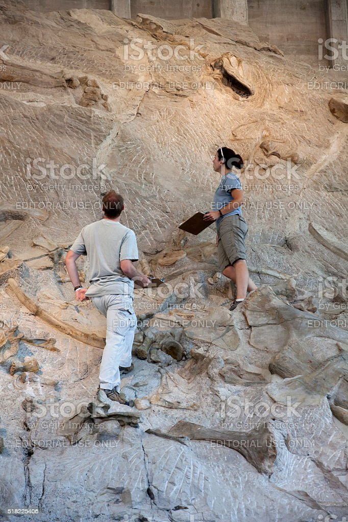 Dinosaur National Monument volunteer scientists inspect bone beds stock photo