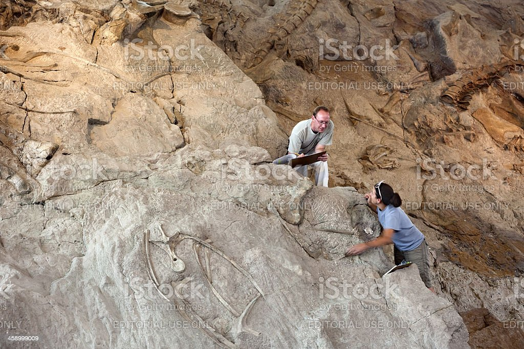 Dinosaur National Monument volunteer scientists stock photo