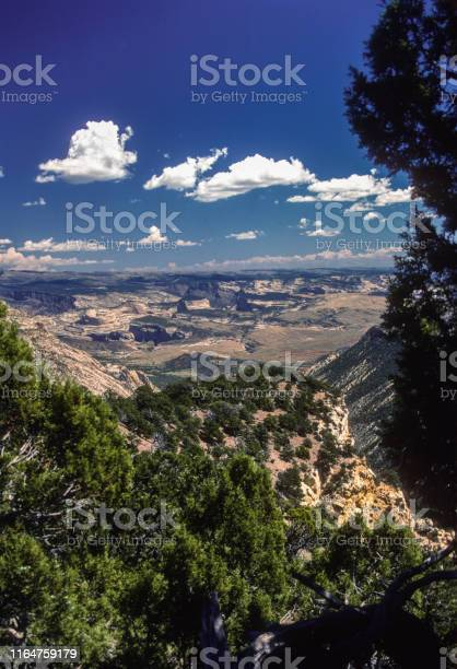 Dinosaur National Monument-Canyon Country Vertical-1986