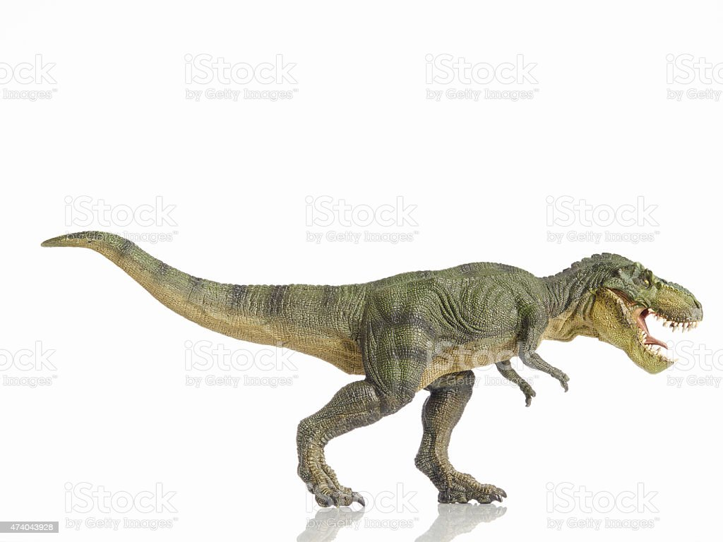 A dinosaur on a white background stock photo