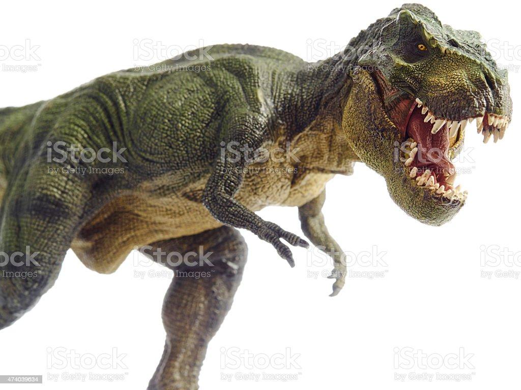 dinosaur stock photo