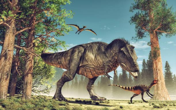 dinosaurier - dinosaurier illustration stock-fotos und bilder
