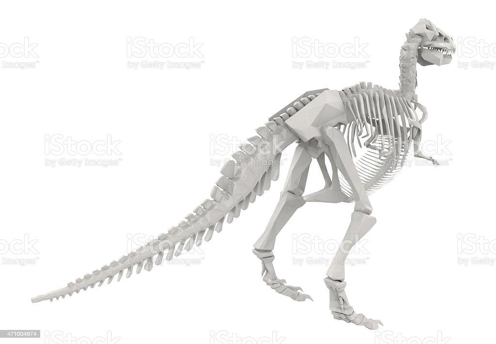 Dinosaur Skeleton isolated on white stock photo