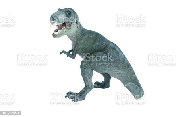 Dinosaur tyrannosaurus rex picture id1017855500?b=1&k=6&m=1017855500&s=612x612&h=k6ptx4bny0jkurvygsqme 9umz1tms197tz1mfx6bia=