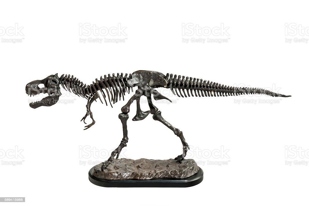 Dinosaur Tyrannosaurus-Rex skeleton metal model stock photo