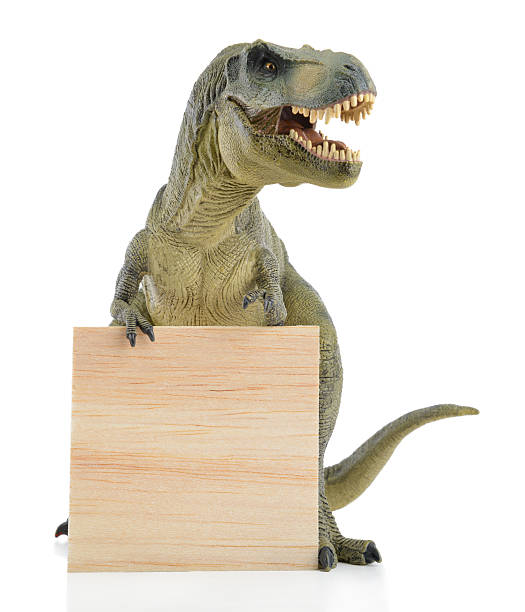 dinosaur with wood board - tyrannosaurus rex stock photos and pictures