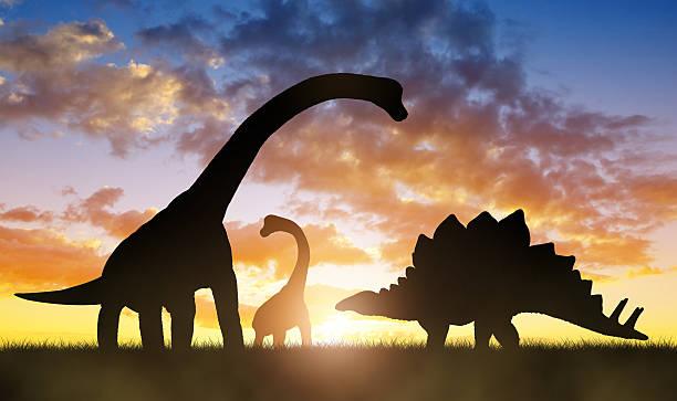 dinosaurs in the sunset - 恐竜 ストックフォトと画像
