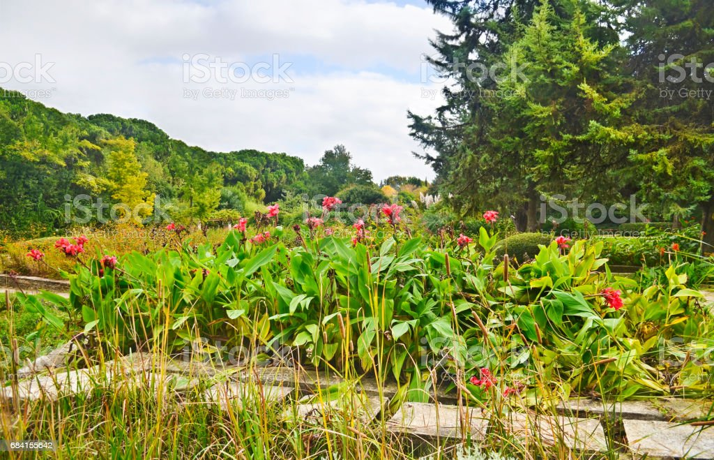 Diomides botanical garden of Greece foto stock royalty-free