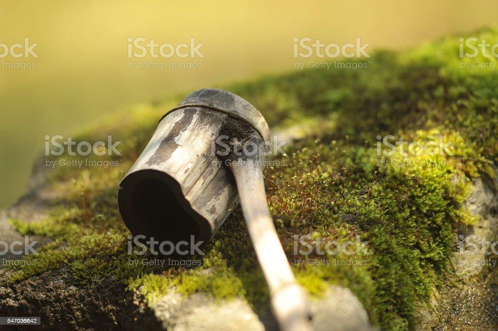 Dipper stock photo