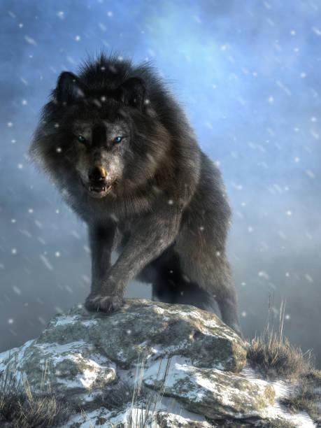 Dire wolf picture id1156349204?b=1&k=6&m=1156349204&s=612x612&w=0&h=zilbg hru73m qptpma1kdijwf0xvnb7e7ytut0qvxo=