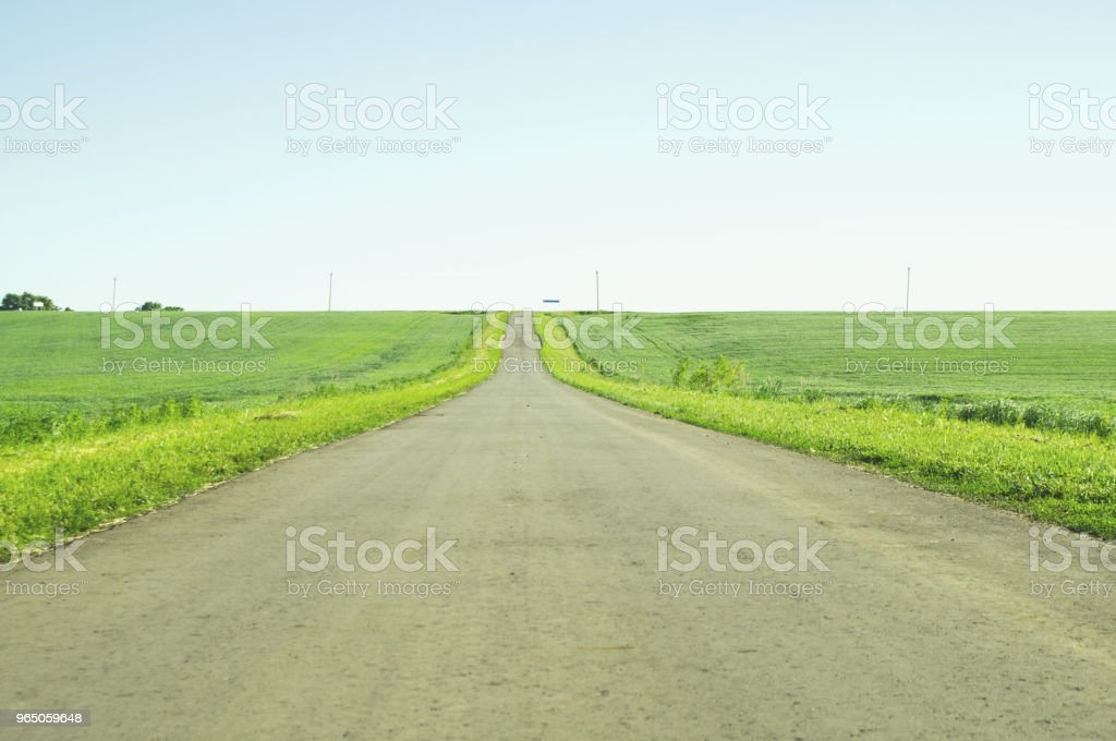 direct road between fields royalty-free stock photo