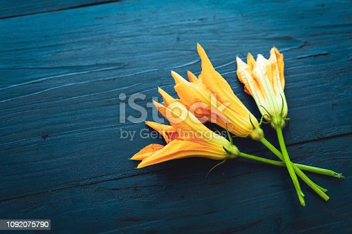 Directly Above Shot of Pumpkin Blossoms over Dark Blue Rustic Wooden Background