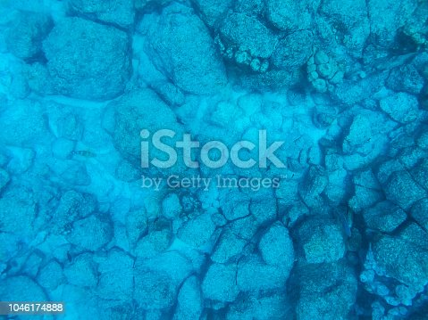 Overhead shot of the ocean floor in the waters of the Pacific Ocean around the Galápagos Islands, Ecuador.