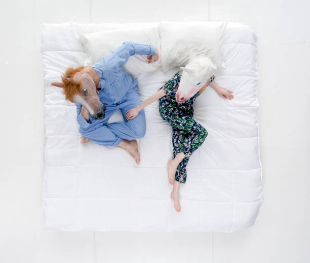 directly above view / full length / two people of 20-29 years old adult handsome people caucasian female / male / young men / young women friendship / boyfriend / girlfriend / couple - relationship / dating / husband / wife / married in the bedroom - unicorn bed imagens e fotografias de stock