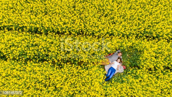 Directly above view from drone of couple lying on blanket on rape field