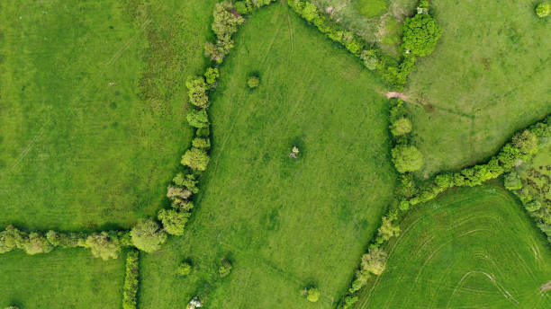 Directly above views of fields in Ireland stock photo