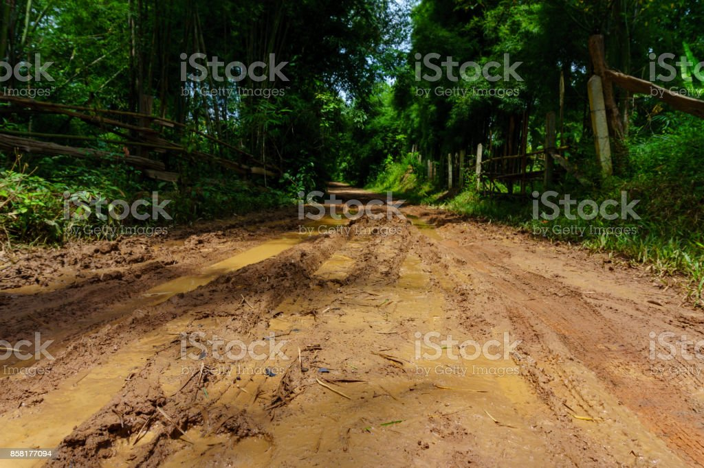 dirt and muddy rural road during a jungle trip through bamboo forest in village at countryside after the rain. stock photo
