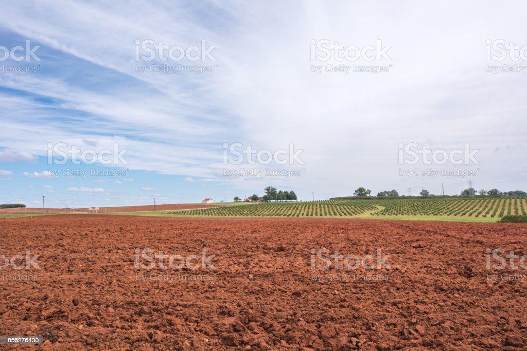 Dirt field ready to be farmed stock photo