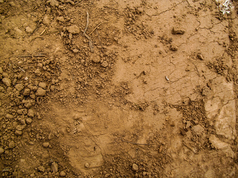 dirt ground texture with small stones