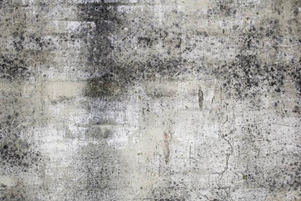 vor schmutz - fliesen verlegen stock-fotos und bilder
