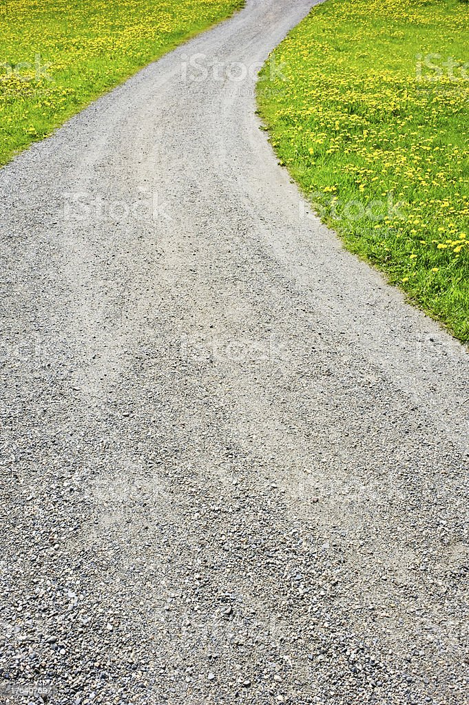 Dirt road and dandelions royalty-free stock photo