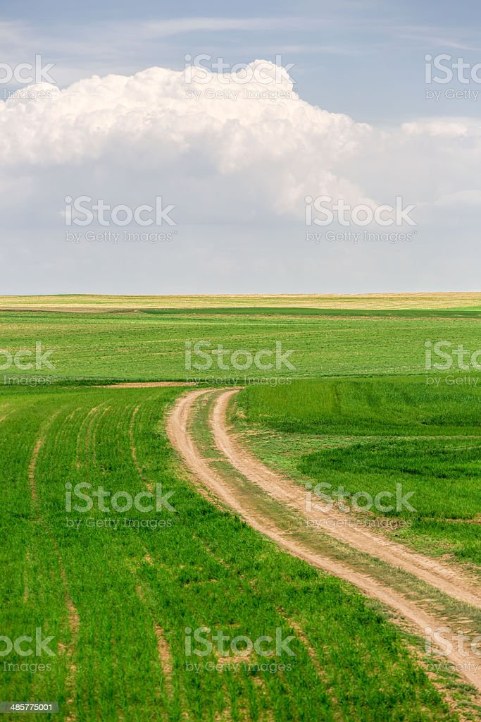 dirt road and fields royalty-free stock photo