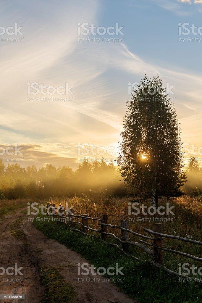 dirt road and wooden fence photo libre de droits