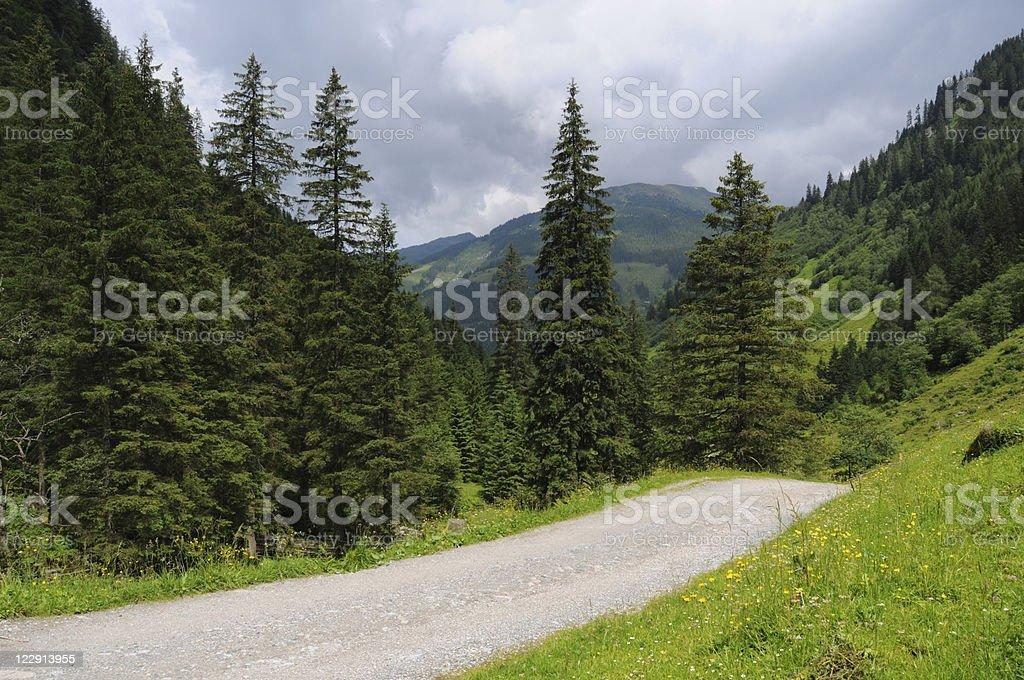 dirt road at Schwarzachtal in Austria stock photo