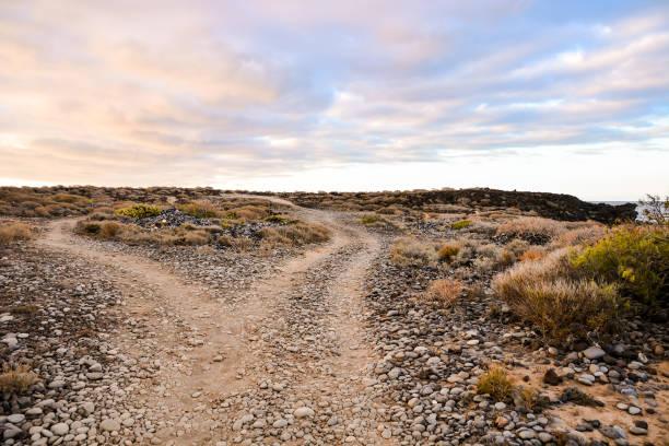 chemin de terre désert - rose des sables photos et images de collection