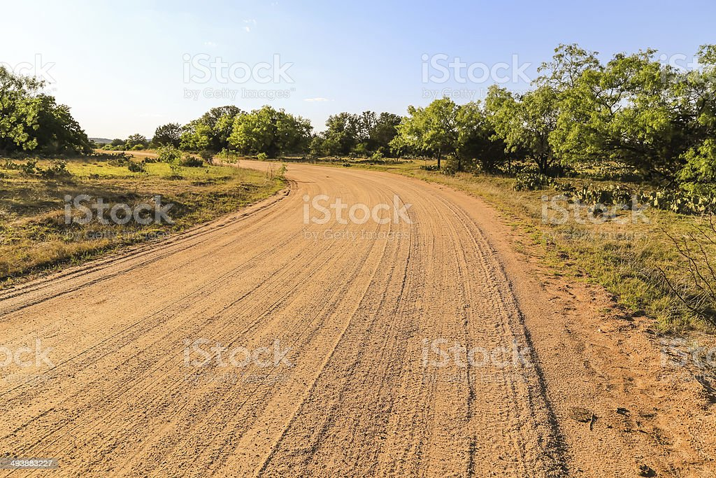 Dirt Road in Cattle Country royalty-free stock photo