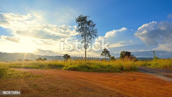 Dirt road in country with tree in nautre from thailand
