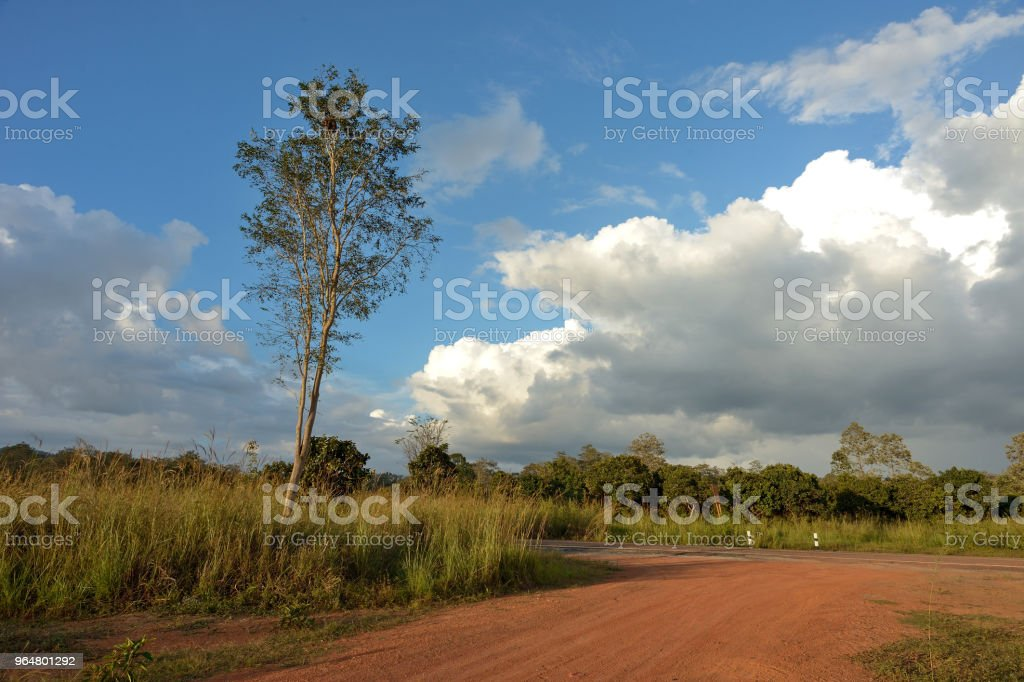 Dirt road in country royalty-free stock photo