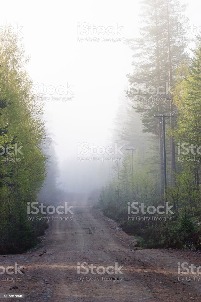 Dirt road in fog - Royalty-free Beauty In Nature Stock Photo