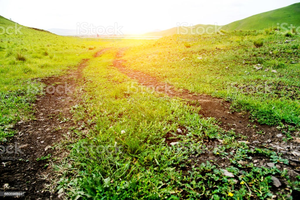 Dirt road in green field royalty-free stock photo