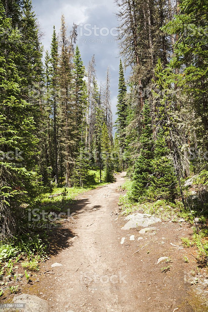 Dirt road in Rocky Mountains royalty-free stock photo